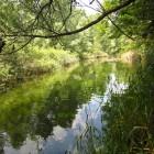 salvaraja-corsi-acqua