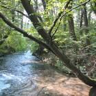 salvaraja-corsi-acqua1